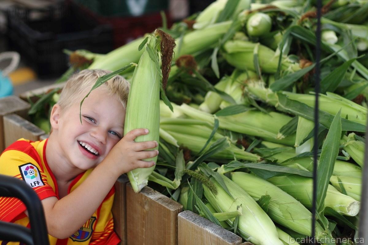 corn 2