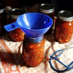Our Best Peach Salsa Recipe for Canning